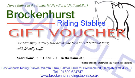 burley manor horse riding voucher
